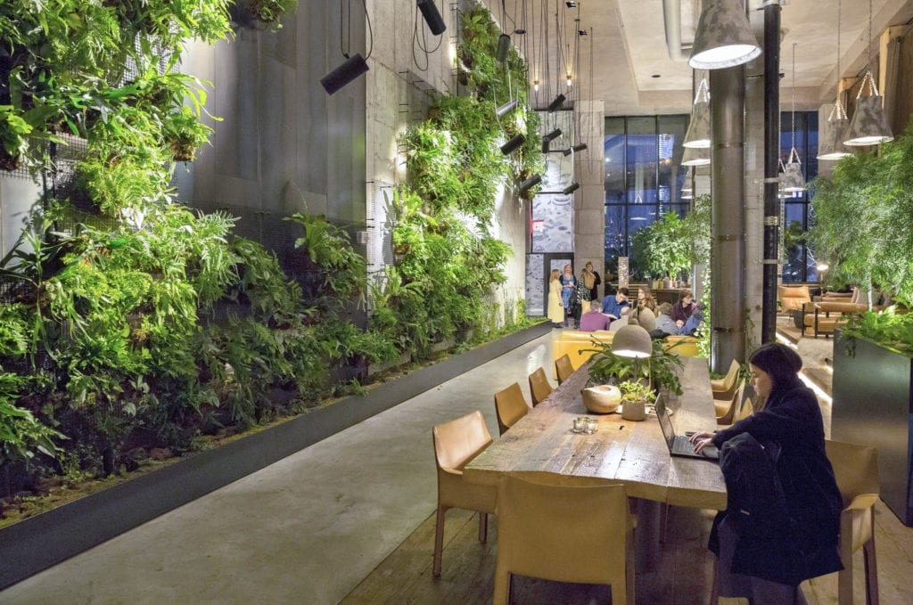 rdi nyc feb 2018 event gallery biophilic design  bringing